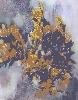 Сонько А. «Натюрморт с розами». Бумага, акварель, 2005 г. (рук. Бурчик А.И.)