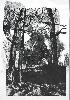 Костевич О., «Одиночество», гравюра на картоне и полиэтилене, 25,2х43,5 2004 г.