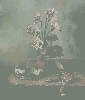 Преснякова М. «Праздничный натюрморт». Холст, масло, 60х50, 2004 г. (рук. Дулуб А.И.)
