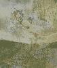 Гук А. Лист из серии «Сад». Бумага, смешаная техника, 45х38, 2001 г. (рук. Лещинский А.А.)